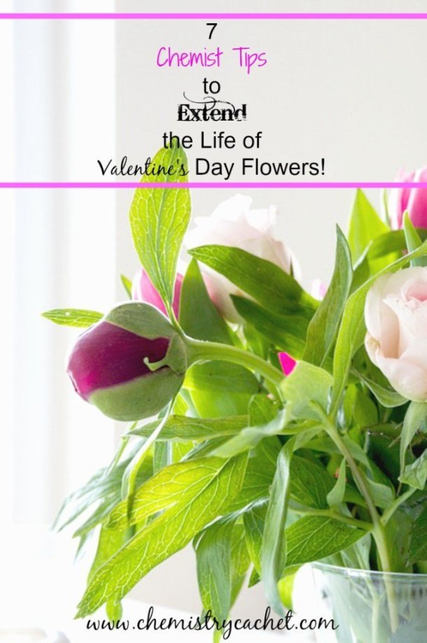 Its-so-sad-when-those-pretty-bouquets-only-last-a-few-days-These-are-awesome-chemist-tips-to-extend-the-life-of-your-fresh-cut-blooms-on-chemistrycachet.com_