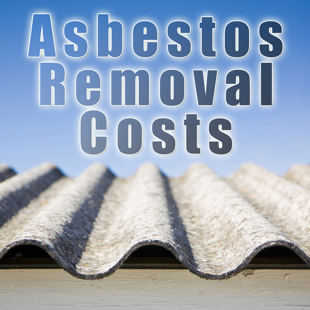 Asbestos Removal Costs Reference Guide