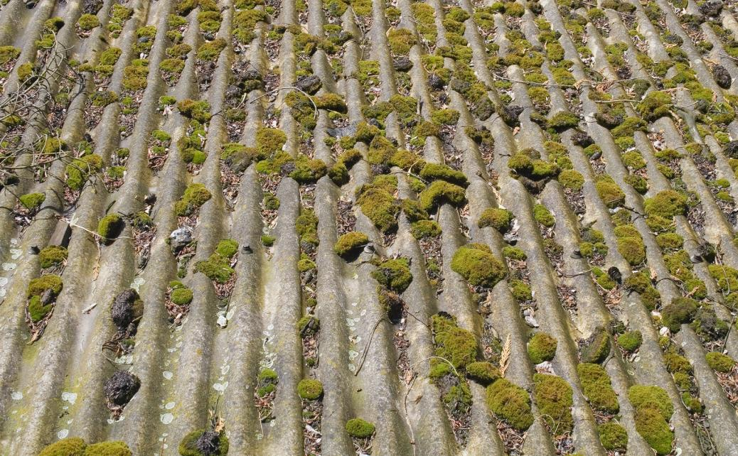 Warning Signs That Show Your Asbestos Garage Roof Is On Its Way Out
