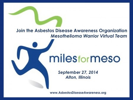 ADAO miles for meso