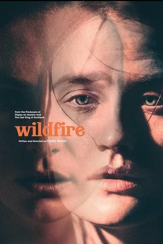 Wildfire (2020) poster locandina