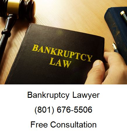 Which Bankruptcy is Better for Your Credit
