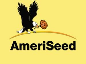 AmeriSeed test - AmeriSeed test