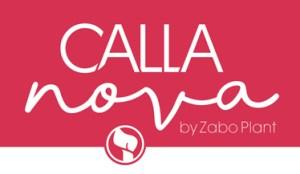 CallNovaLogo invlak 300x174 - Zabo Plant