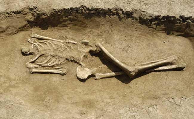 Uno scheletro ritrovato in spiaggia, foto generica