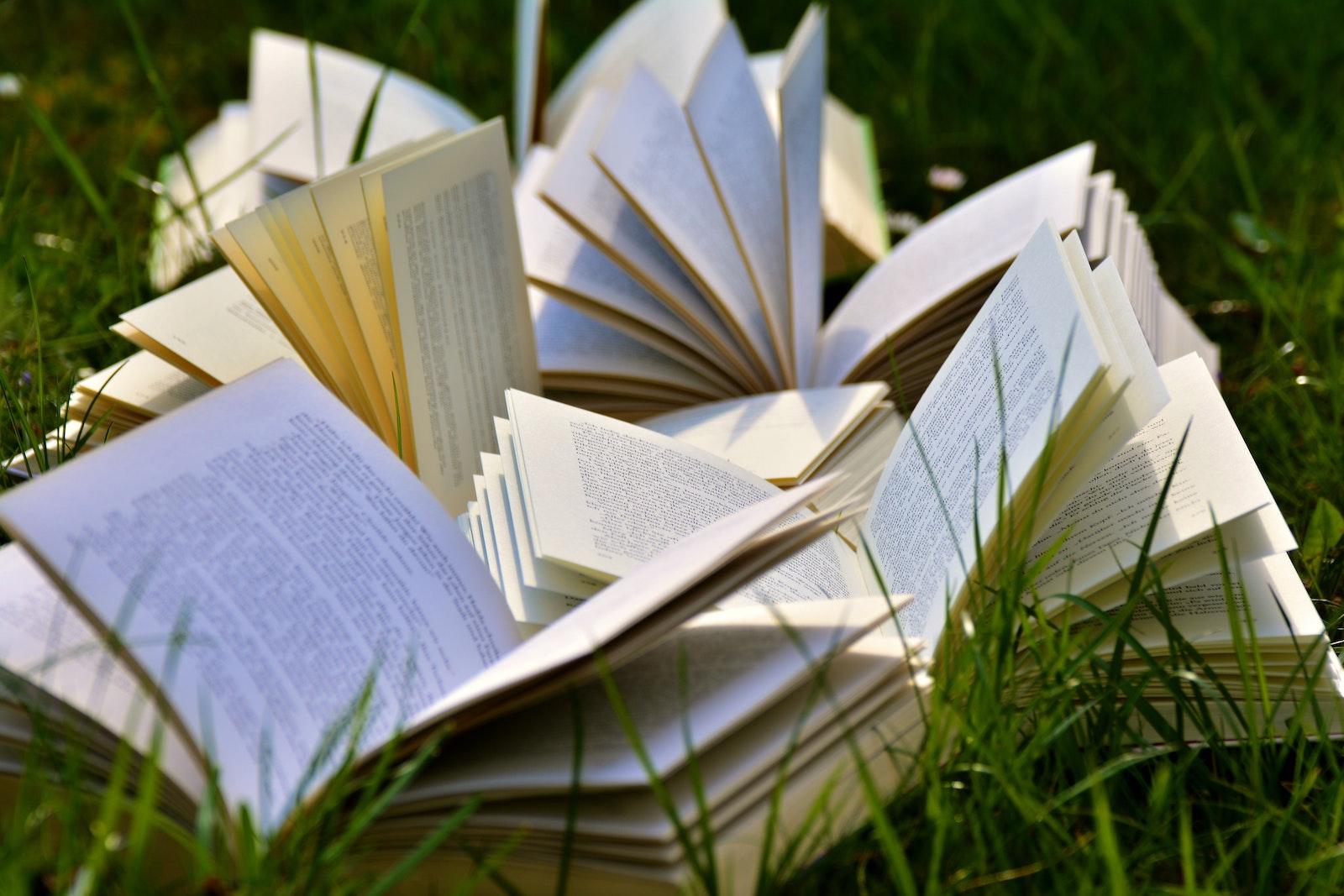 Bibliografia per terza, quarta e quinta elementare #ioleggoperchè