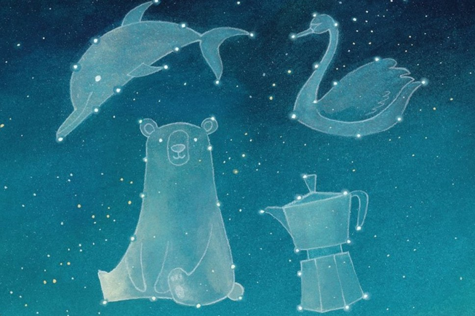 vera la mongolfiera cielo stellato