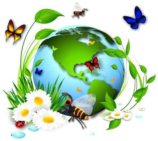 biodiversiteplanete