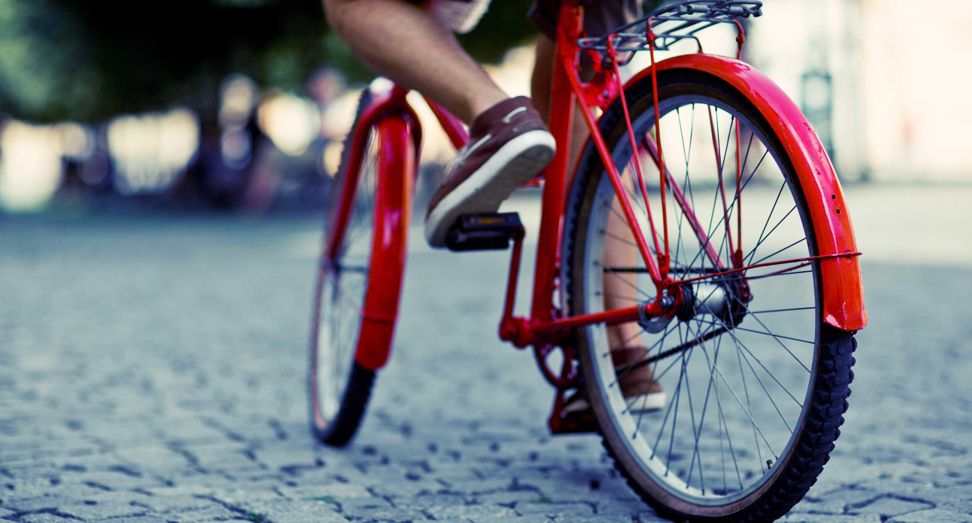Seguro para bicicletas y para la seguridad del conductor