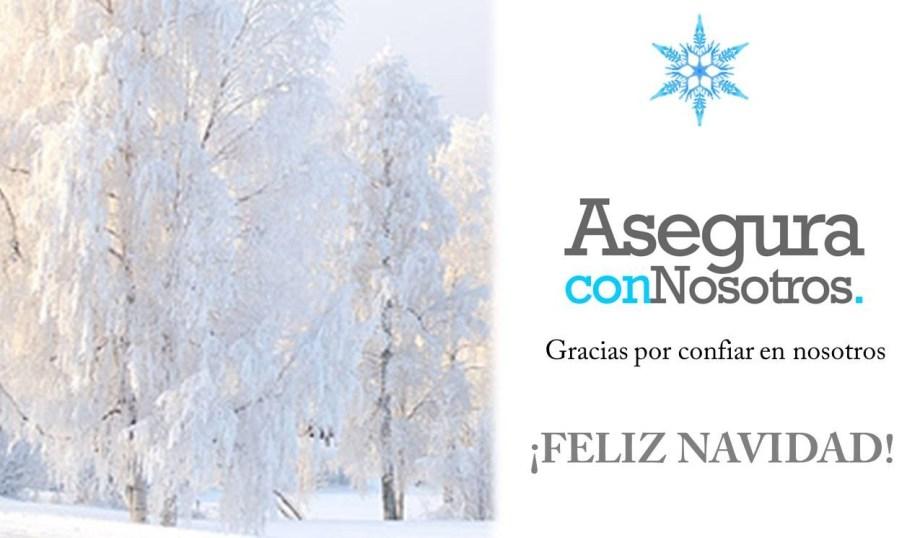 Feliz navidad y gracias por contar con nosotros!
