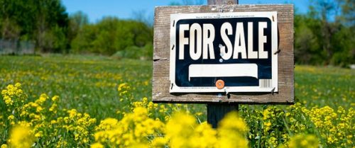 Buying a Website? How to Stay Away from Shady Marketplace Listings