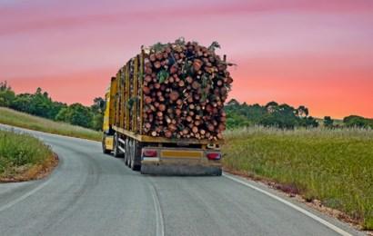 Medidas especiales de regulación del tráfico durante 2021