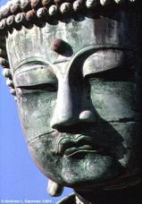 Bronze Buddha (Head Detail)