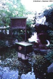 White Dragon protecting a coin pond