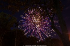 2012 Downingtown Fireworks 039