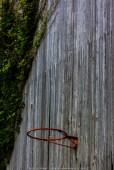 Empty Basketball Frame