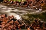 120912 Marsh Creek Spillway hdr 10