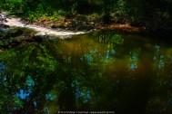 120912 Marsh Creek Spillway hdr 12 ps