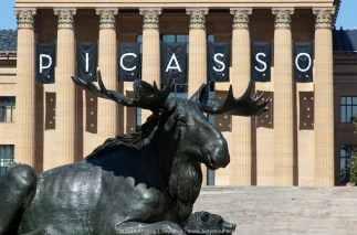 Picasso Moose