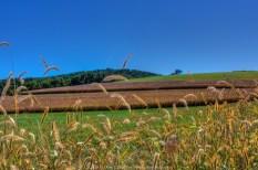 Corn Fields (2010) - Pughtown & St Matthews Rds 02