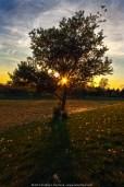 Sunsets taken at Shamona Elementary School, Downingtown, Chester County, PA.