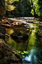 Brandywine Creek - Summer 2012