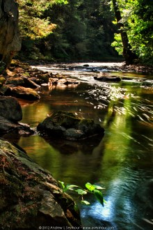Brandywine Creek - Summer 2012
