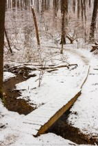 MCSP Dam Spring snow 010