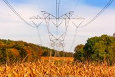 Corn field power