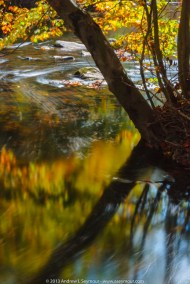 Creek Rd Tone Map 111 - The Fall colors along Creek Rd in Chester County PA.