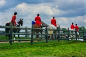 Radnor Hunt Races 007