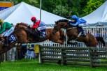 Radnor Hunt Races 239