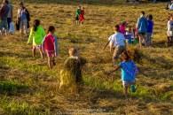 Children of the Hay 018