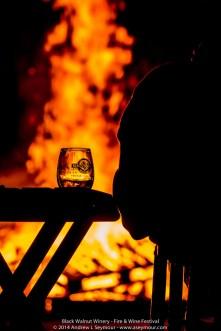 Fire & Wine Festival 149