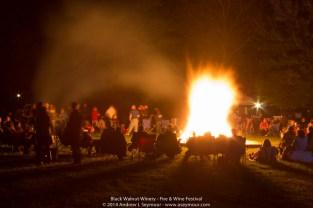 Fire & Wine Festival 320