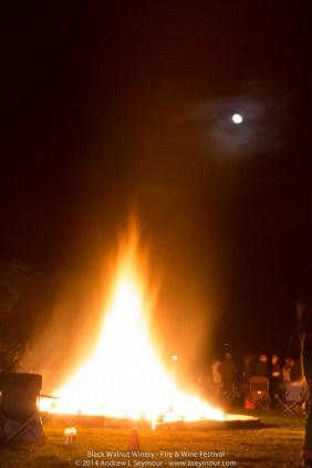 Fire & Wine Festival 527