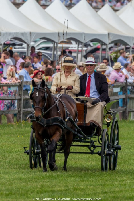 Carriages of Radnor Hunt 071