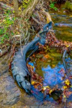 Tire in Valley Creek 340