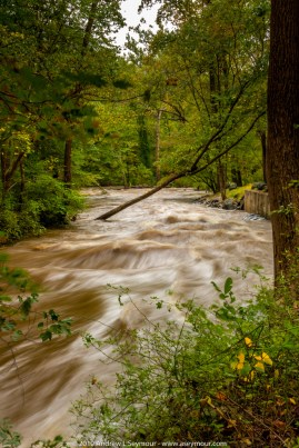 Hibernia Park 067 - The Brandywine Creek West Branch, on the South side of Hibernia Park in Coatesville PA, after the heavy rains of September 30th from the remains of a Tropical Storm, Nicole.