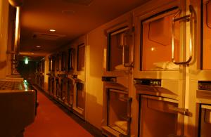 Hotel Kapsul: Solusi Menginap Murah dan Unik di Jepang