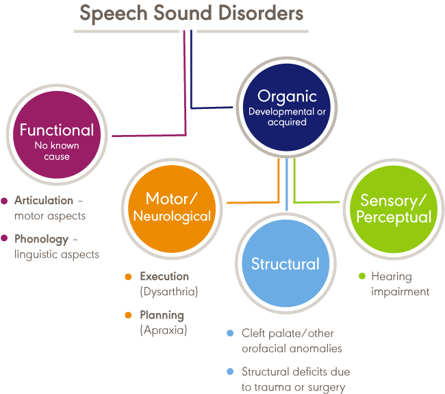 Speech Sound Disorders Umbrella