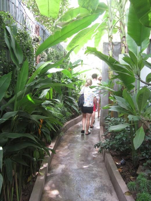 gastrobar botanico