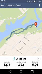 Part of Mink and Church trail at Lake Nockamixon on a beautiful Fall morning