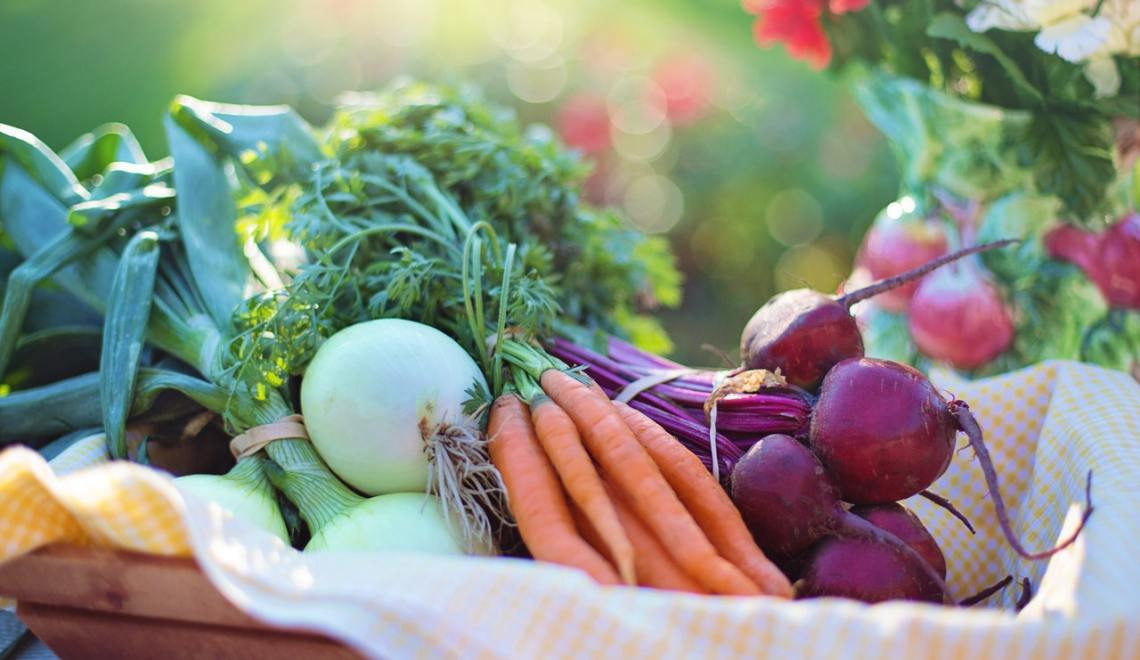 planting vegetable gardens