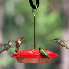 Hummingbird feeder, birdhouse