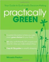 Spring Cleaning Green Cleaner Book