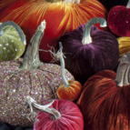 decorative-pumpkins-2