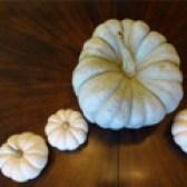 decorative-pumpkins-17
