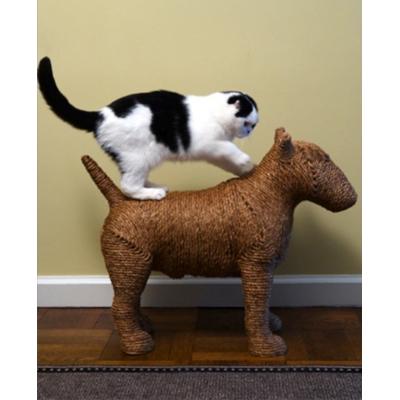 pet tech, cat scratching post