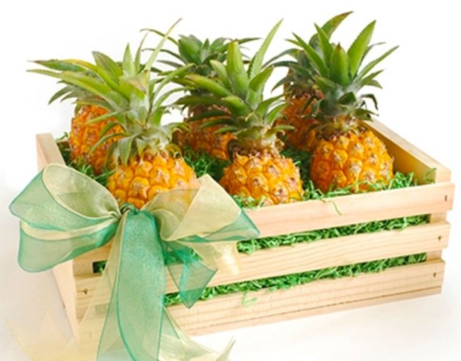 fun 2017 holiday gifts pineapples